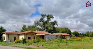 124 W San Miguel Street  , La Mesa, NM 88044 (MLS #1402868) :: Steinborn & Associates Real Estate