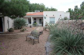 2587  Tularosa Drive  , Las Cruces, NM 88007 (MLS #1402869) :: Steinborn & Associates Real Estate