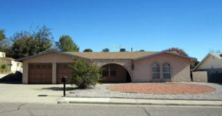 1759  Royal Drive  , Las Cruces, NM 88011 (MLS #1403442) :: Steinborn & Associates Real Estate