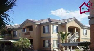 3650  Morning Star Drive  , Las Cruces, NM 88011 (MLS #1403458) :: Steinborn & Associates Real Estate
