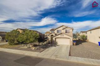 6119  Blue Mountain Drive  , Las Cruces, NM 88012 (MLS #1403472) :: Steinborn & Associates Real Estate