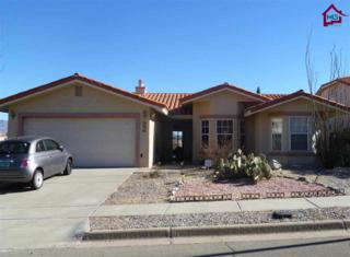 3848  Frontier Drive  , Las Cruces, NM 88011 (MLS #1403495) :: Steinborn & Associates Real Estate