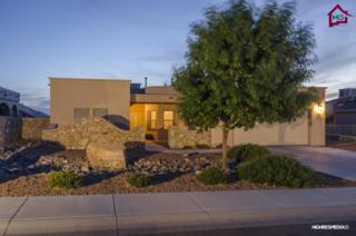4123  Mojave Drive  , Las Cruces, NM 88005 (MLS #1403607) :: Steinborn & Associates Real Estate