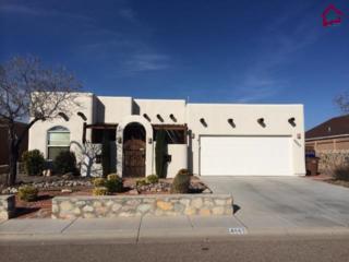4865  Camino Dos Vidas  , Las Cruces, NM 88012 (MLS #1403633) :: Steinborn & Associates Real Estate