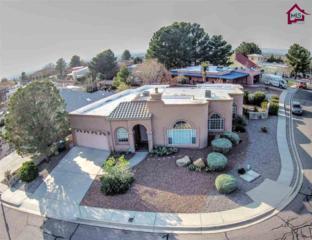3853  Grand Teton Way  , Las Cruces, NM 88011 (MLS #1403648) :: Steinborn & Associates Real Estate