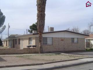 1017 N Pueblo Street  , Las Cruces, NM 88005 (MLS #1403665) :: Steinborn & Associates Real Estate