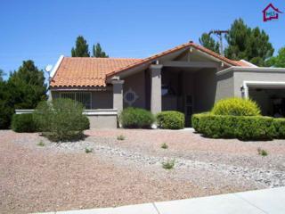 3012  Buena Vida Circle  , Las Cruces, NM 88011 (MLS #1403677) :: Steinborn & Associates Real Estate