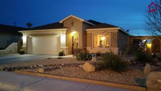 3640  Vista Belleza Ave  , Las Cruces, NM 88012 (MLS #1403678) :: Steinborn & Associates Real Estate