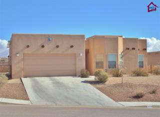 3056  Chippewa Summit  , Las Cruces, NM 88011 (MLS #1403679) :: Steinborn & Associates Real Estate