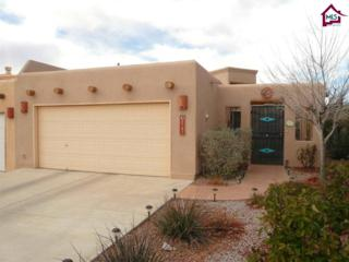 2131  Foxtail Pine Drive  , Las Cruces, NM 88012 (MLS #1500310) :: Steinborn & Associates Real Estate