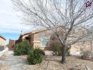 4753  Diamante Court  , Las Cruces, NM 88012 (MLS #1500548) :: Steinborn & Associates Real Estate