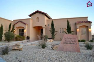 150  Red Deer Court  , Las Cruces, NM 88007 (MLS #1500606) :: Steinborn & Associates Real Estate