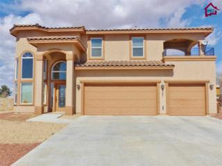 4307  Great Sandy Drive  , Las Cruces, NM 88011 (MLS #1500617) :: Steinborn & Associates Real Estate