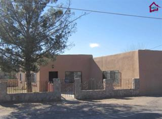 481  Tortugas Drive  , Las Cruces, NM 88001 (MLS #1500643) :: Steinborn & Associates Real Estate