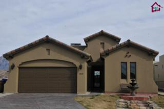 1060  Calle Griega  , Las Cruces, NM 88011 (MLS #1500655) :: Steinborn & Associates Real Estate