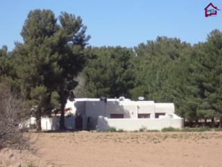 4080  Rocky Acres Trail  , Las Cruces, NM 88007 (MLS #1500657) :: Steinborn & Associates Real Estate