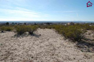 Sage Road  , Las Cruces, NM 88011 (MLS #1500678) :: Steinborn & Associates Real Estate