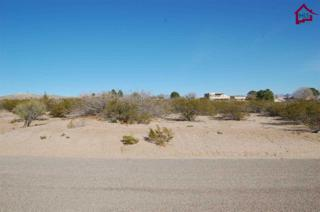 Sage Road  , Las Cruces, NM 88011 (MLS #1500680) :: Steinborn & Associates Real Estate