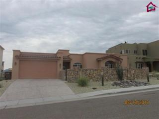 4324  Calle Bonita  , Las Cruces, NM 88011 (MLS #1500682) :: Steinborn & Associates Real Estate
