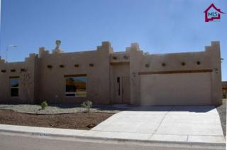 4154  Calle De Luna  , Las Cruces, NM 88012 (MLS #1500683) :: Steinborn & Associates Real Estate