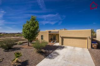 5855  Habanero Drive  , Las Cruces, NM 88012 (MLS #1501081) :: Steinborn & Associates Real Estate
