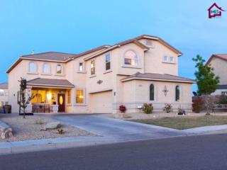 2490  Gila Bend Loop  , Las Cruces, NM 88011 (MLS #1501115) :: Steinborn & Associates Real Estate