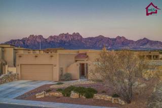 4360  Hopi Court  , Las Cruces, NM 88011 (MLS #1501134) :: Steinborn & Associates Real Estate