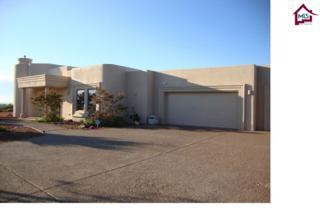 6695  Butterfield Ridge  , Las Cruces, NM 88007 (MLS #1501201) :: Steinborn & Associates Real Estate