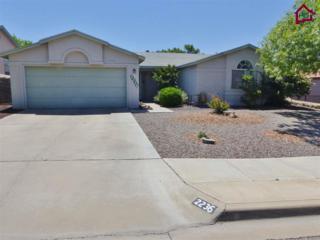 2236  Bright Star Avenue  , Las Cruces, NM 88011 (MLS #1501203) :: Steinborn & Associates Real Estate