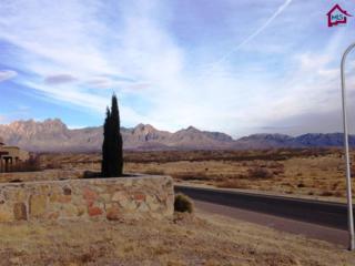 4435  Miramar Arc  , Las Cruces, NM 88011 (MLS #1501212) :: Steinborn & Associates Real Estate