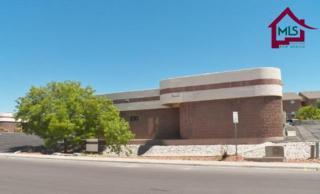 1161 #A&B  Mall Drive  , Las Cruces, NM 88011 (MLS #1501219) :: Steinborn & Associates Real Estate