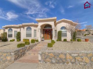 1178  Warm Springs Lane  , Las Cruces, NM 88011 (MLS #1501485) :: Steinborn & Associates Real Estate