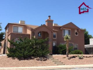2257  Cimarron Drive  , Las Cruces, NM 88011 (MLS #1501498) :: Steinborn & Associates Real Estate