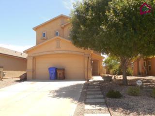 5086  Kenwood Road  , Las Cruces, NM 88012 (MLS #1501555) :: Steinborn & Associates Real Estate
