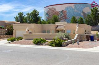 2556  Millennium Street  , Las Cruces, NM 88011 (MLS #1501561) :: Steinborn & Associates Real Estate