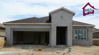 4730  Zachary Place  , Las Cruces, NM 88012 (MLS #1501566) :: Steinborn & Associates Real Estate