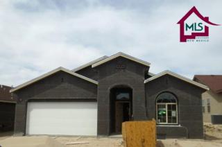 4761  Whitney Place  , Las Cruces, NM 88012 (MLS #1501567) :: Steinborn & Associates Real Estate