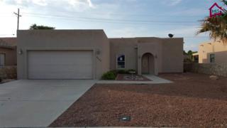 4222  Trillium Drive  , Las Cruces, NM 88007 (MLS #1501569) :: Steinborn & Associates Real Estate