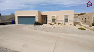 3718  Chromite Court  , Las Cruces, NM 88012 (MLS #1403604) :: Steinborn & Associates Real Estate