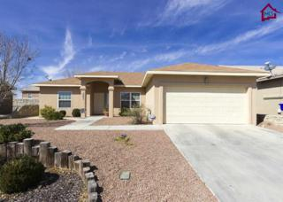 4005  Jewel Court  , Las Cruces, NM 88012 (MLS #1500513) :: Steinborn & Associates Real Estate