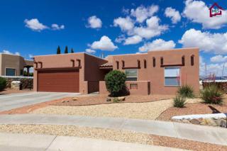 659  Cedardale Loop  , Las Cruces, NM 88005 (MLS #1501377) :: Steinborn & Associates Real Estate