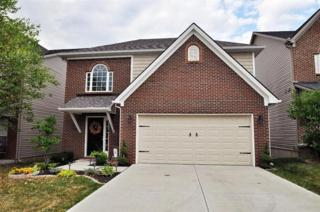 3321  Mathern Trl  , Lexington, KY 40509 (MLS #1414182) :: Nick Ratliff Realty Team