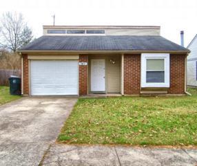 3451  Royal Wood  , Lexington, KY 40515 (MLS #1424015) :: Nick Ratliff Realty Team