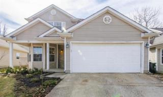 3560  Forest Spring Ct  , Lexington, KY 40509 (MLS #1502943) :: Nick Ratliff Realty Team