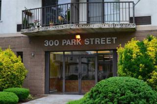 300  Park St  4D, Hackensack, NJ 07601 (MLS #150007567) :: Provident Legacy Real Estate Services