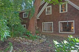 348A  Main St  , Setauket, NY 11733 (MLS #2638143) :: Carrington Real Estate Services