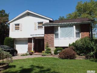 981  Lydia Pl  , Baldwin, NY 11510 (MLS #2703708) :: RE/MAX Wittney Estates
