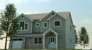 86  Pittsburgh Ave  , Massapequa, NY 11758 (MLS #2723114) :: RE/MAX Wittney Estates