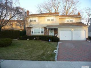 385  Robyn Pl  , East Meadow, NY 11554 (MLS #2732492) :: RE/MAX Wittney Estates