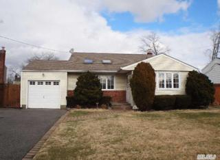 229  Violet St  , Massapequa Park, NY 11762 (MLS #2733081) :: RE/MAX Wittney Estates